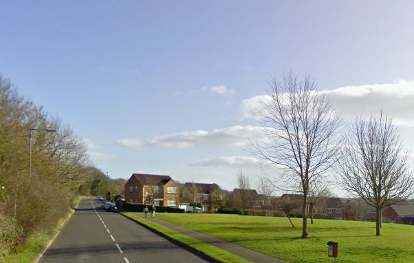 Woman injured in Yate dog attack
