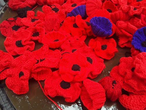 Poppy peace gardens will mark armistice centenary