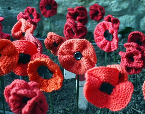 Hand crafted poppies will create centenary displays
